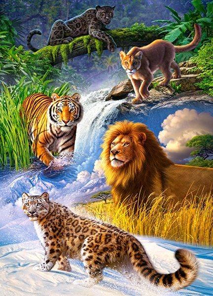 CASTORLAND Puzzle Velké kočky 260 dílků