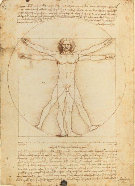 CLEMENTONI Puzzle Vitruvianský muž, proporce lidské postavy 500 dílků