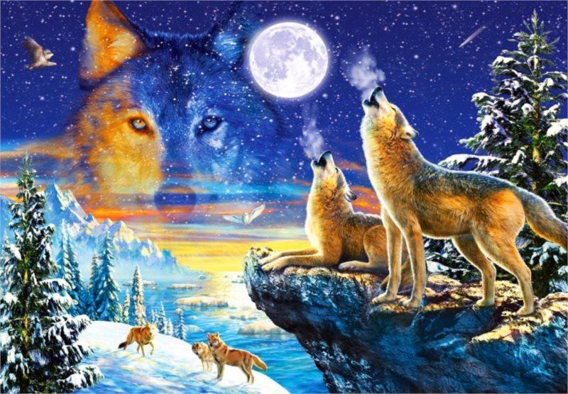 CASTORLAND Puzzle Vyjící vlci 1000 dílků