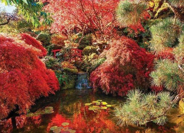 Puzzle EUROGRAPHICS 1000 dílků : Zahrady Butchart - Japonská zahrada