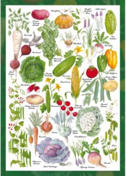 Puzzle SCHMIDT 59567 Zeleninová zahrada 1000 dílků