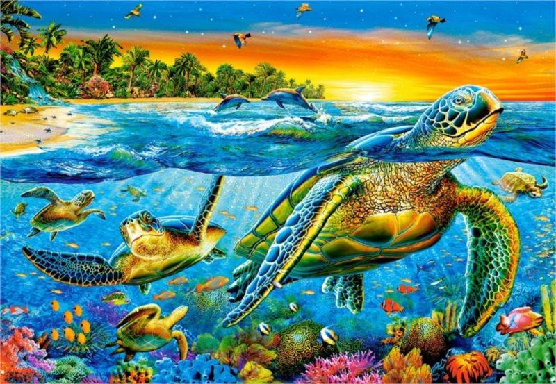 Puzzle CASTORLAND 103652 Vodní želvy 1000 dílků