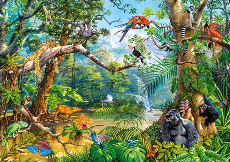 CASTORLAND Puzzle Život v džungli 500 dílků