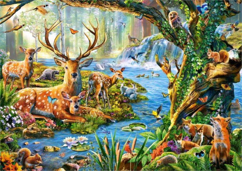 CASTORLAND Puzzle Život v lese 500 dílků