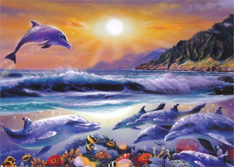 Puzzle KING 5067 Život v oceánu 1000 dílků