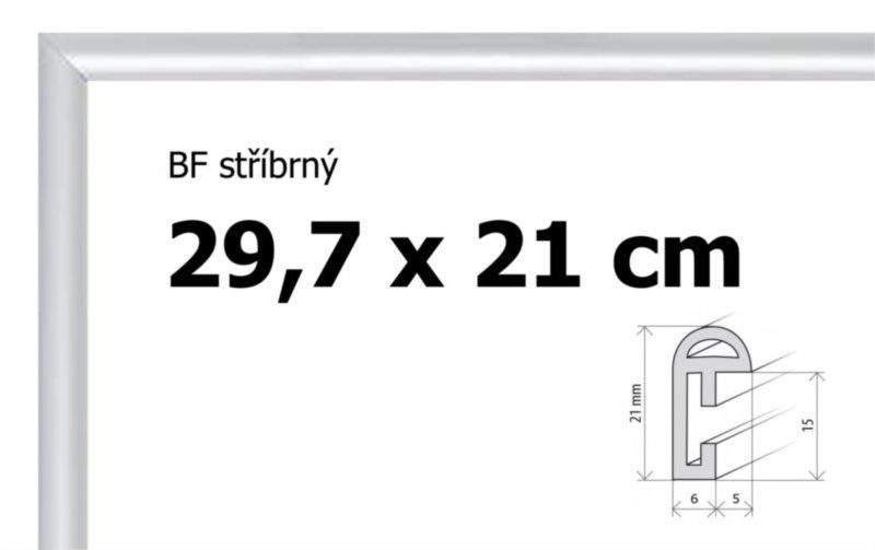 BFHM Plastový rám 29,7x21cm A4 - stříbrný