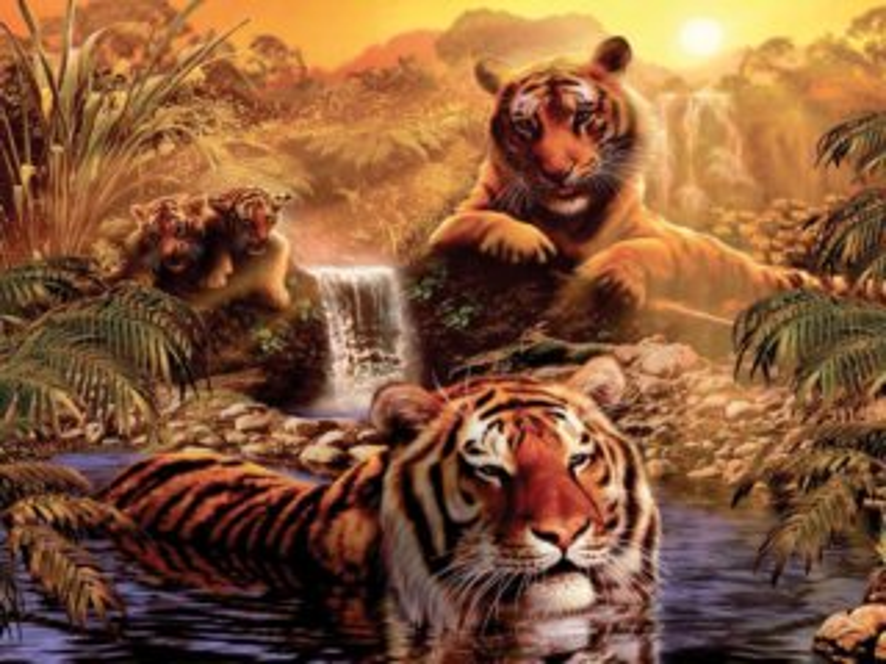 RAVENSBURGER Puzzle Tygři u vody 2000 dílků