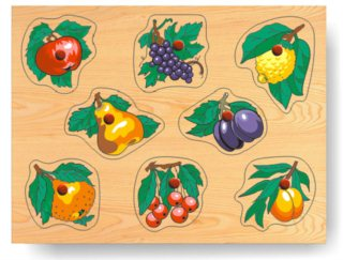 Vkládačka Ovoce s listy