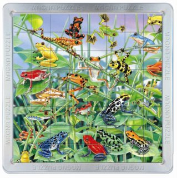 3D magnetické puzzle PIATNIK 64 dílků - Žáby