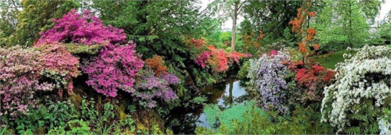 HEYE Panoramatické puzzle Zahrada Bodnant Garden, Wales 6000 dílků