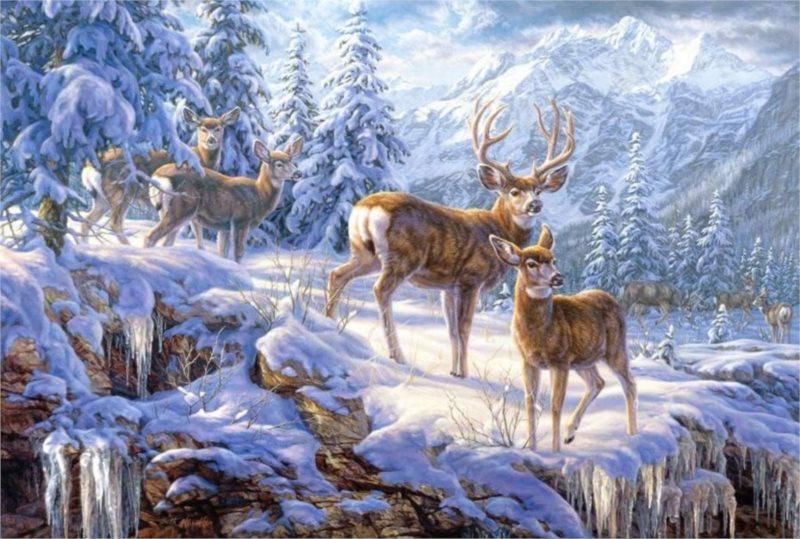 CASTORLAND Puzzle Zima na horách 1000 dílků