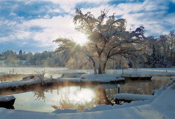 Puzzle TREFL 2000 dílků - Zimní svítání u jezera