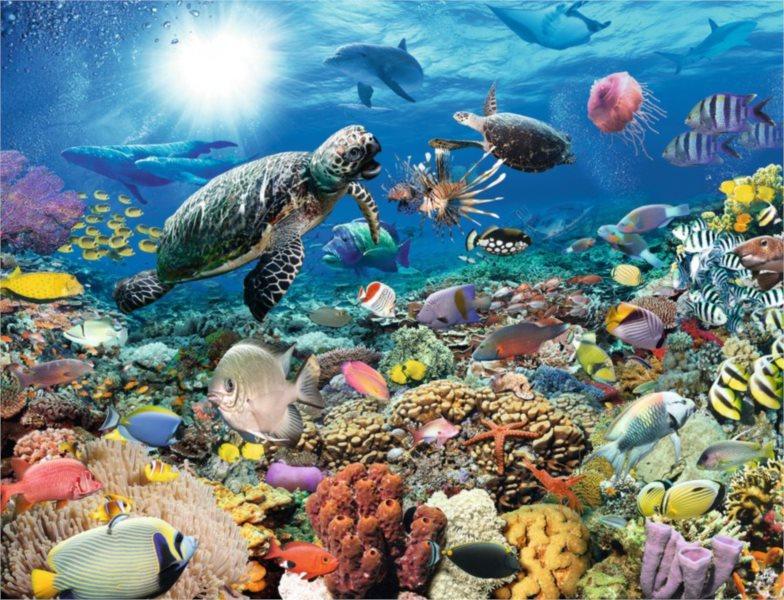 RAVENSBURGER Puzzle Život na korálovém útesu 2000 dílků