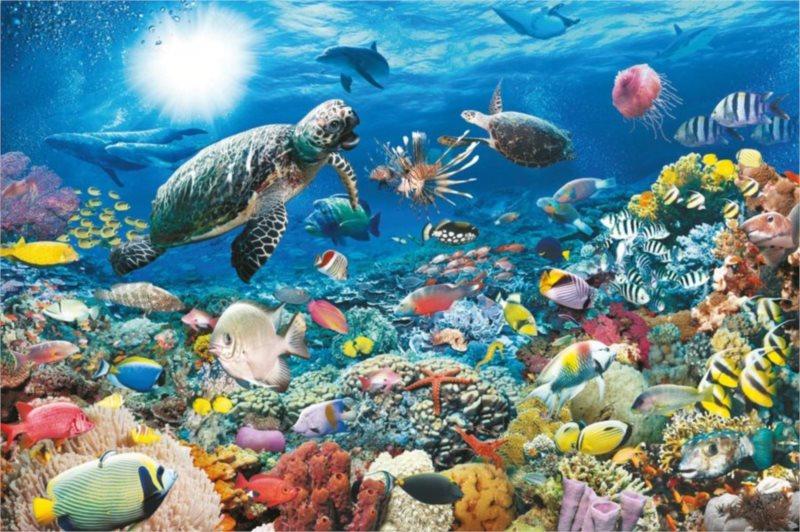 Puzzle RAVENSBURGER 5000 dílků - Život na korálovém útesu