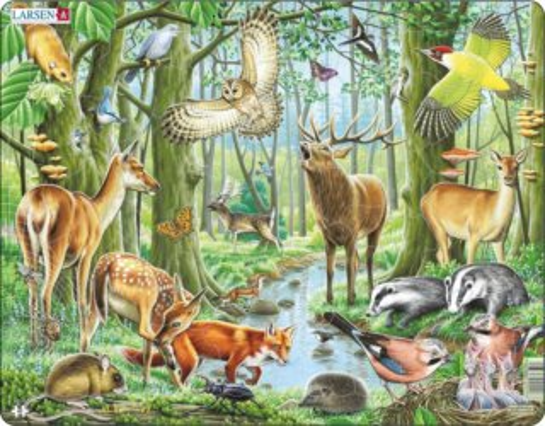LARSEN Puzzle Život v lese 40 dílků