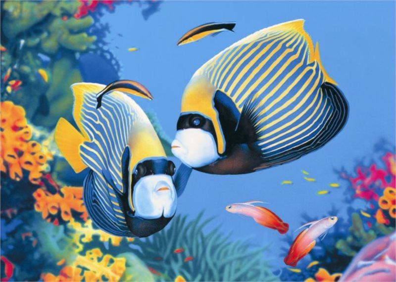 Puzzle DINO 1000 dílků - Život v moři
