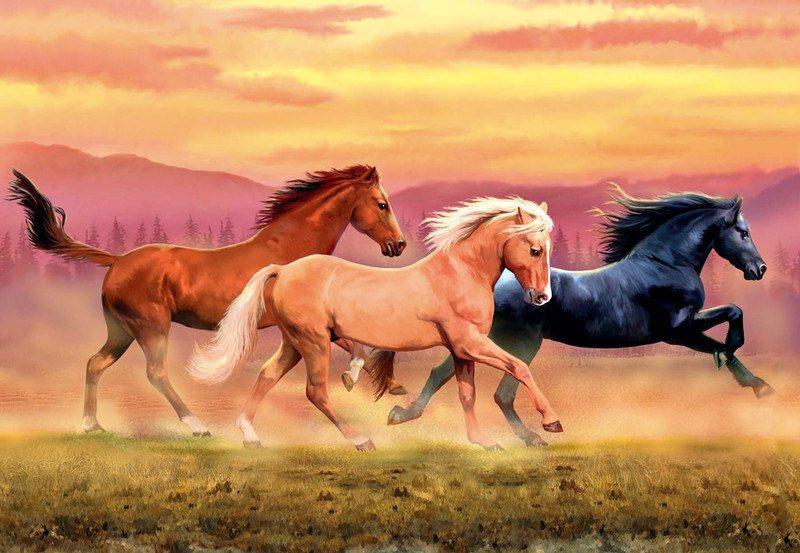 Раскраски лошадей красивые