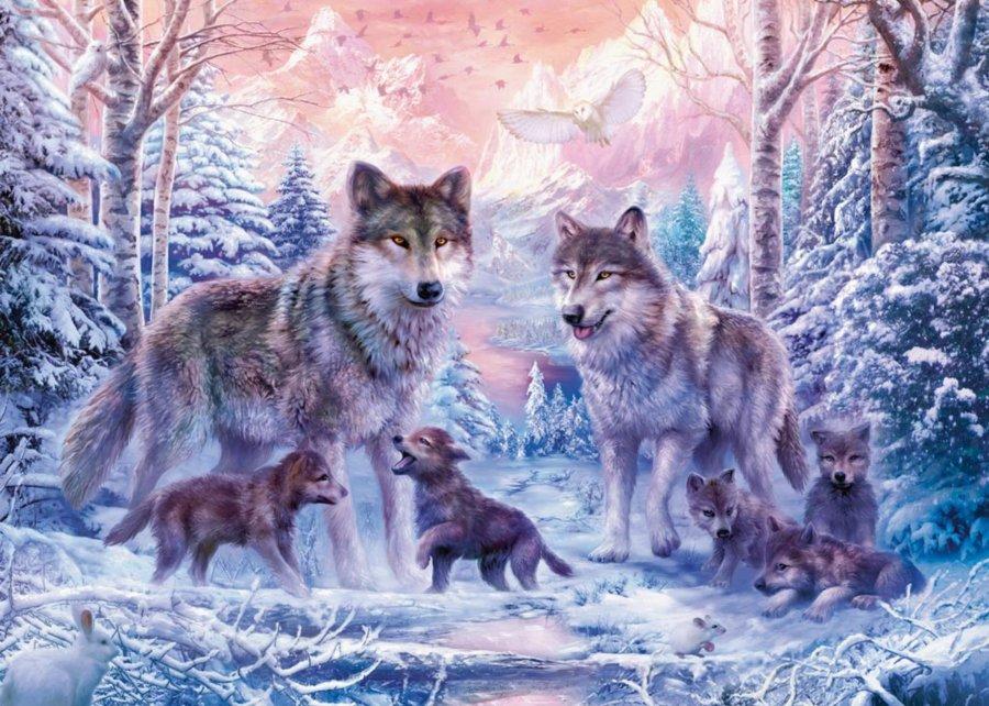 Výsledek obrázku pro obrázky vlci