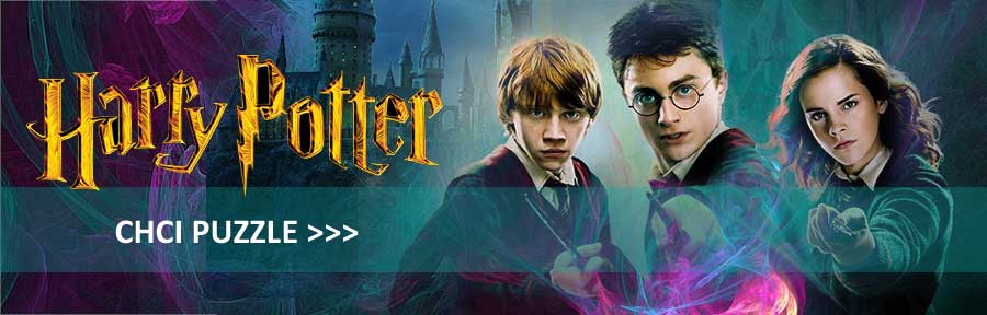 Puzzle s motivem Harry Potter